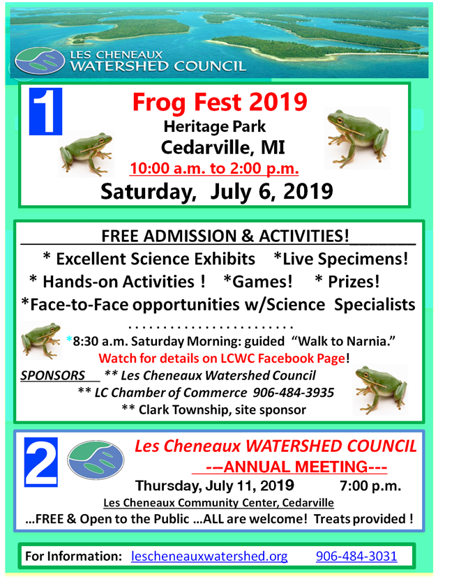Frogfest19