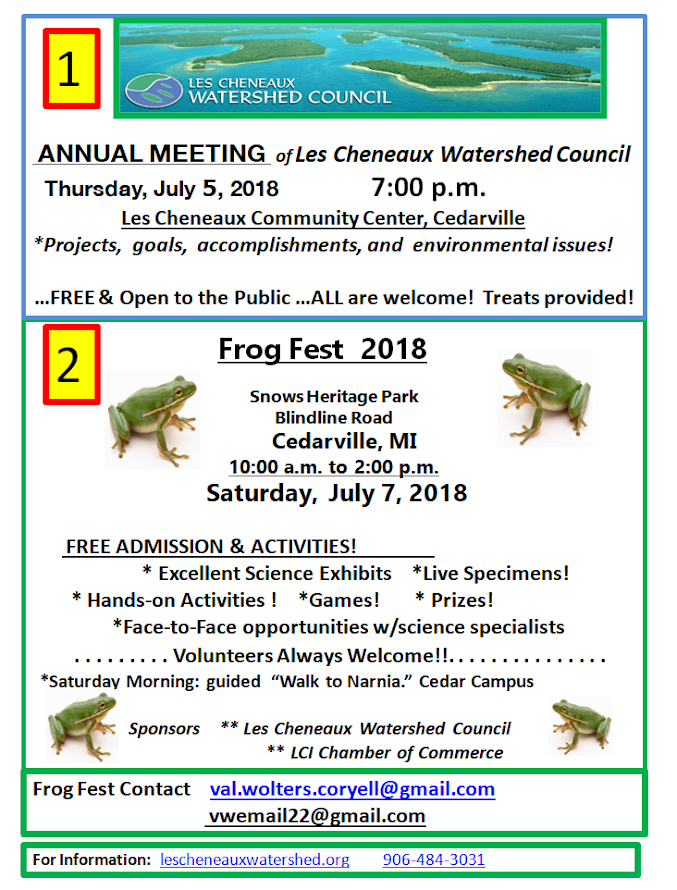 Frogfest 2018