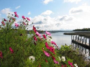 Cedarville Harbor_12